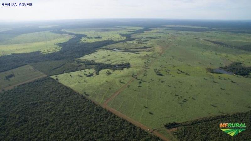 TOCANTINS - FAZENDA 2.876,89 HECTARES, PRÓXIMO DA LAGOA DA CONFUSÃO- TO
