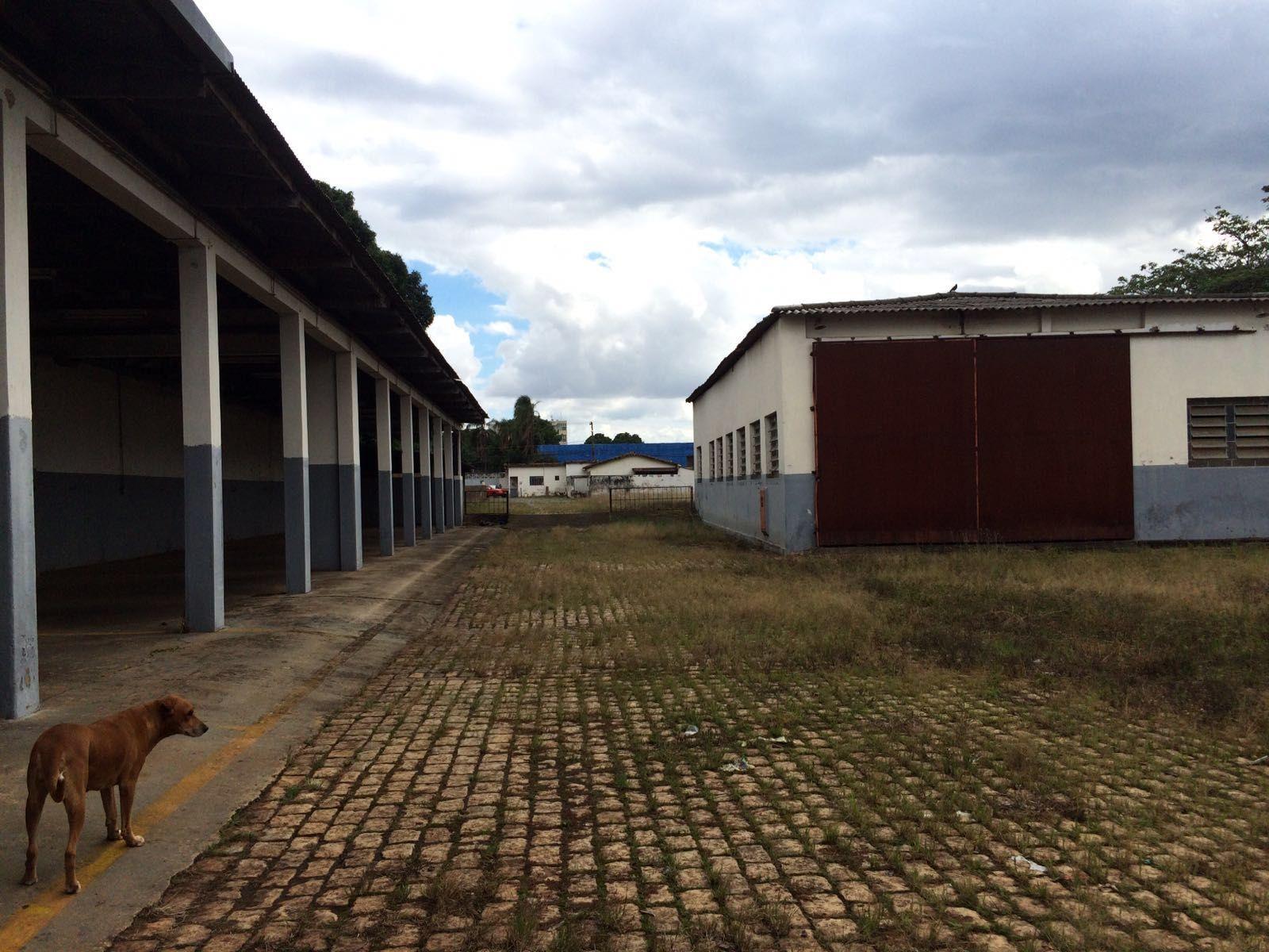 GALPÃO SETOR RODOVIARIO